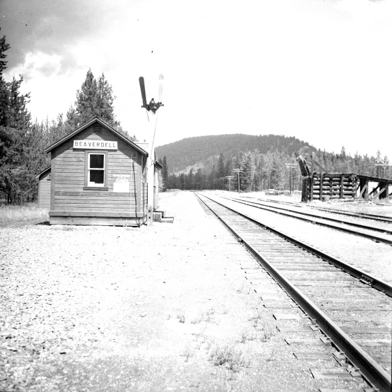 Title proper Beaverdell CPR depot General material designation     Graphic material Title statements of responsibility Photograph taken by David Davies. Title notes     Source of title proper: Derived title. Level of description Item Repository Northern BC Archives & Special Collections Reference code 2013.6.36.1.027.15 Dates of creation area Date(s)     [July 1966] (Creation) Physical description area Physical description 1 photograph : b&w ; 9 x 9 cm Archival description area Scope and content Photograph depicts the CPR Beaverdell depot located at about 35 miles northeast of Osoyoos and at mile 91.4 east of Penticton on the Carmi Subdivision. The traffic here is ore from a local mine, some lumber, and freight for the village. The depot building is in use and has a telegraph. There is also siding capacity for 31 cars. This section was built between 1914 and 1915. The view is looking north.