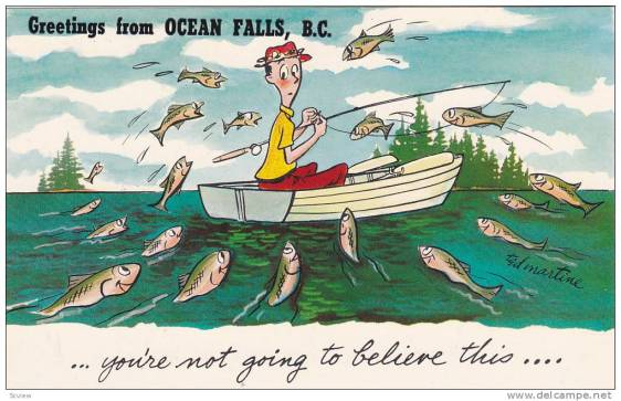 greetings from ocean falls b.c....you're not going to believe this
