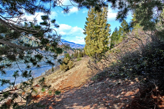 Walking Path View Trail B.C.