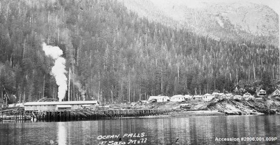 Ocean Falls' first sawmill was built in 1909 by Ocean Falls Company.     The Bella Coola Pulp and Paper Company organized and staked leases on approximately 80,000 acres which, ultimately provided the foundation for pulp and paper projects and the sawmill in Ocean Falls.