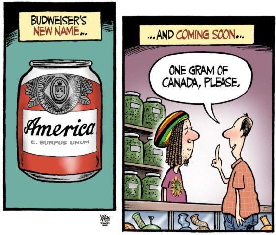 theo-moudakis-america-beer.jpg.size.custom.crop.760x650